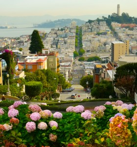Island Trader Vacations Reviews 3 Fantastic Boutique Hotels in San Francisco