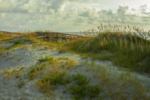 Island Trader Vacations Getting To Know Tybee Island
